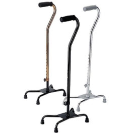 Walking Aides/ Canes